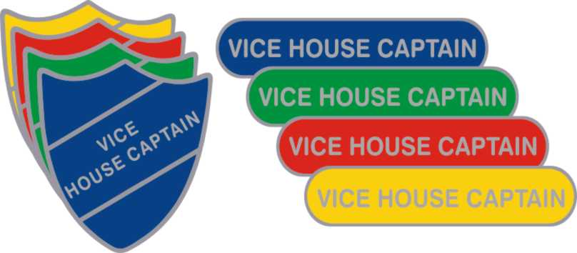 Image result for SCHOOL HOUSES BADGES