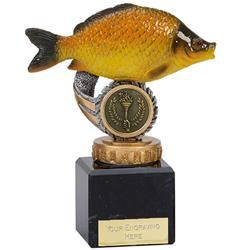 Common Carp Fishing Trophy